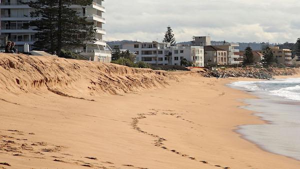 Erosion along Sydney beaches (CREDIT: David Morgan-Mar via Flickr)